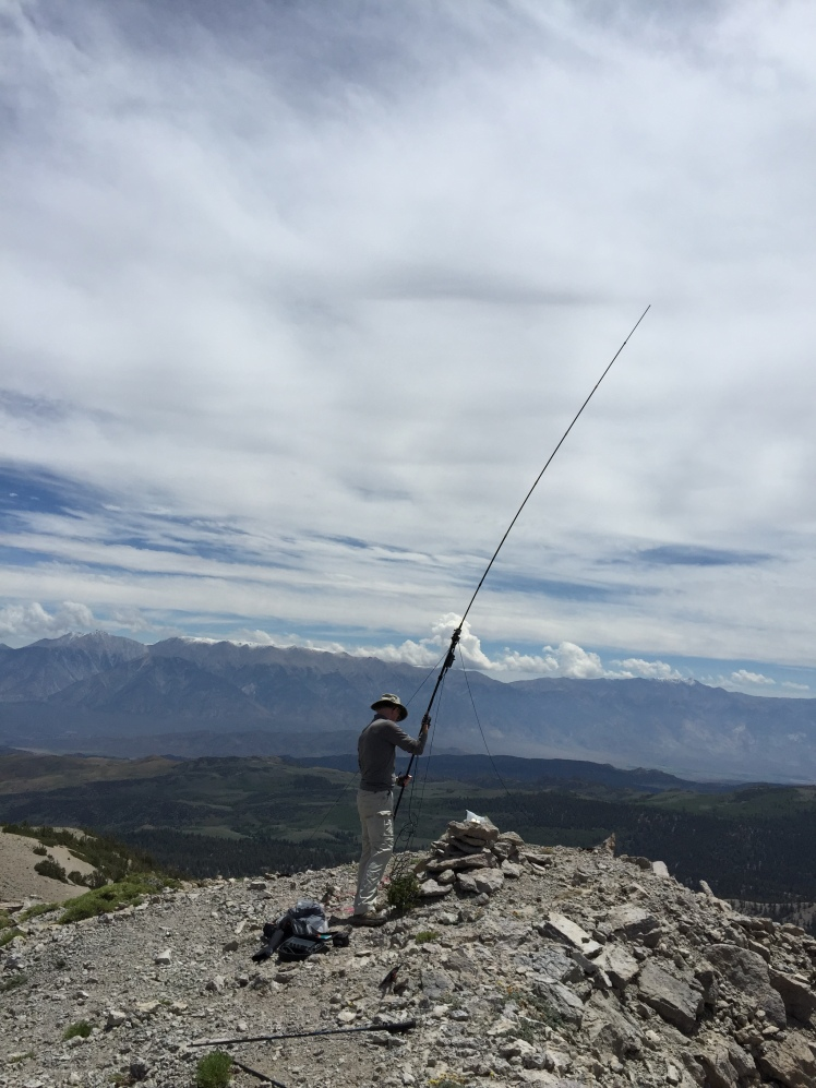 Putting up the Buddipole vertical for 20m