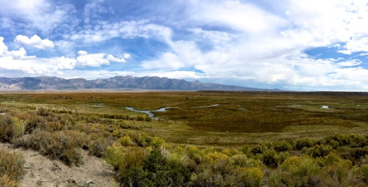 Owens River as it probably looked for 100s miles south before LA